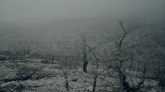 Pov shot of a barren land,burned out forest in mist and fog Stock Footage