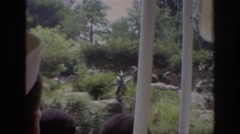 1962: people standing near to white poles and looking the greenery outside Stock Footage