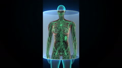 Female Human body scanning lymphatic system. Blue X-ray light. HD Stock Footage