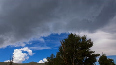 Timelapse of Cloudscape over Ancient Bristlecone Pine Tree -Tilt Down- Stock Footage