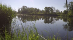 Idyllic morning at the river Oder Stock Footage