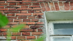 Part of brick wall and wooden glassed window with cracked white paint on it. HD Stock Footage