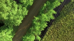 Slowly rising aerial shot of a small country road with green trees surrounding Stock Footage