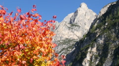 Indian summer in dolomites alps Stock Footage