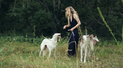 Girl in black dress with two Russian greyhounds Stock Footage
