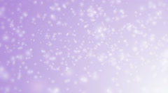 Soft beautiful violet backgrounds. Stock Footage