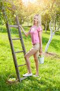 Young woman with a ladder picking apples from an apple tree Stock Photos