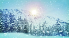 Wintry forest christmas scene with tilt shift blur seamless loop 4k (4096x2304) Stock Footage