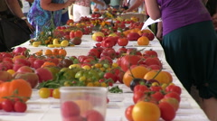 Zoom out from table to people at tomato exhibition Stock Footage