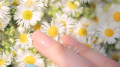 Female hand is touching a bouquet  Stock Footage