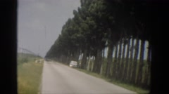 1959: a view of a long road lined with trees and a car parked along side  Stock Footage