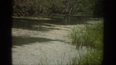 1959: nothing like hanging out at the creek on your weekend off with friends Stock Footage