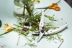 Flower arranger's workbench Secateurs scissors and plant stalks and trimmings Stock Photos