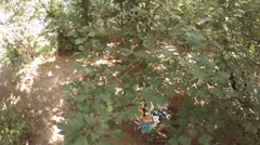 Household garbage in the woods, slow motion Stock Footage