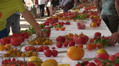 Tilt from tomato to people at tomatoe exhibition Stock Footage