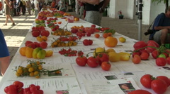 People at tomato exhibition Stock Footage