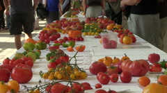 Varieties of tomato exhibition Stock Footage