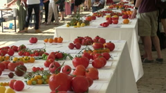 Many tomatoes at the table Stock Footage
