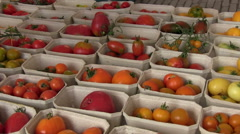Colorful rare old tomato varieties in boxes Stock Footage
