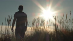 A Walk Out On Calm Coast And Sunny Dunes Stock Footage