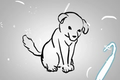 Puppy - Animation - outline - White Background Stock Footage