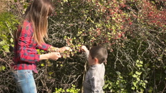Mother and son collecting wild berries Stock Footage