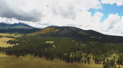Aerial Camera Gliding Over Coconino National Forest- Flagstaff AZ Stock Footage