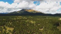Flying Over Pine Trees Toward Kendrick Peak- Flagstaff AZ Stock Footage