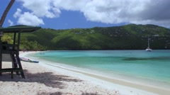 Panning video of palm trees on the beach, Magens Bay, St Thomas Stock Footage