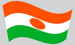Flag of Niger waving on gray background Stock Illustration