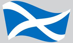 Flag of Scotland waving on gray background Piirros