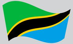 Flag of Tanzania waving on gray background Stock Illustration