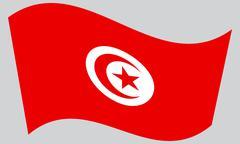 Flag of Tunisia waving on gray background Stock Illustration