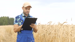 Farmer in a plaid shirt in a golden wheat field controlled his field and writ Stock Footage