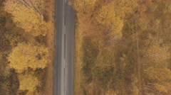 Autumn road from a height Stock Footage