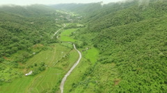 Aerial View Above Mountain Forest Stock Footage