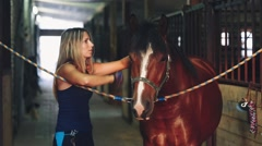 Woman Brushing Her Horse in the Stable Stock Footage