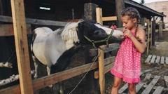 Curly Girl Feeding the Pony an Apple on the Farm Stock Footage