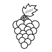 Grapes healthy fruit icon Stock Illustration