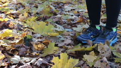 Walking in park over autumn ground covered with golden fallen leaves. Stock Footage