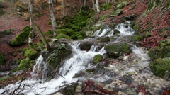 Water source Tornareccia in the National Park of Abruzzo in Italy Stock Footage