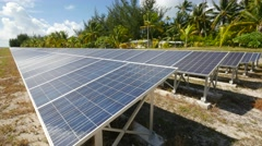 Solar panels and coconut trees Stock Footage