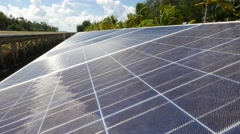 Close up of solar panels and coconut trees Stock Footage