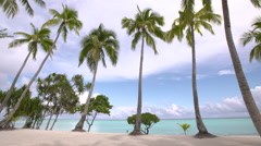 Tropical beach with coconut palms trees Stock Footage