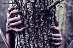 Zombie or monster hiding behind a tree Stock Photos