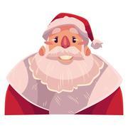 Santa Claus face, smiling facial expression Stock Illustration