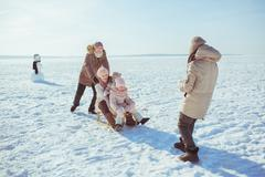 Happy big family sledge in winter field Stock Photos