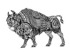 Zentangle stylized Black Bison. Piirros