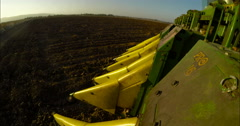 POV shot of a cotton picker working in a cotton field during sunset Stock Footage