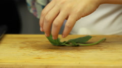 Woman slice cutting chop Basil, how to cut with chef knife Stock Footage